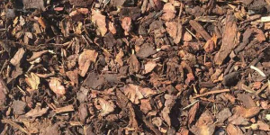 Ornamental Bark Supplier London | Ashville Aggregates