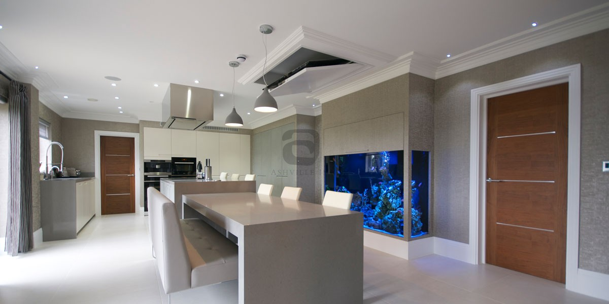 Ashville Smart Homes TV Home Discreet Audio and Video retracting television London